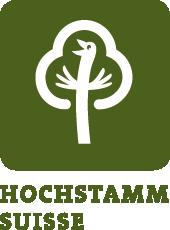 Logo_HST_S_dt_greun_dunkel